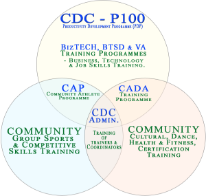 PDP P100 Programme Structure